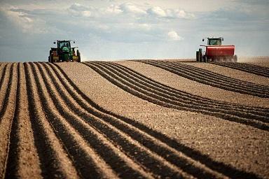 В Минсельхозе обсудили ход сезонных полевых работ и ситуацию на продовольственных рынках в регионах