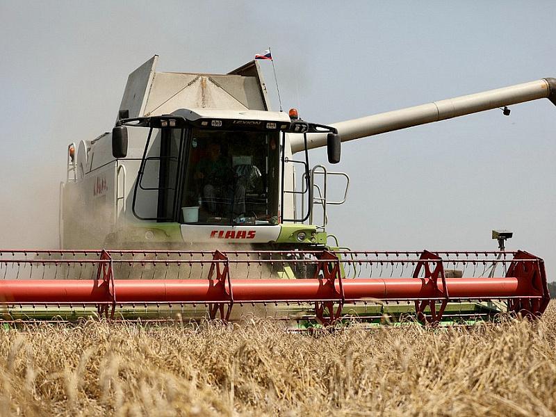 В Краснодарском крае в 2021 году собрали рекордные 12,4 млн тонн зерна